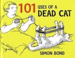 cat uses