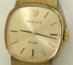 Rolex Orchid