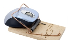 computer mouse trap.jpg